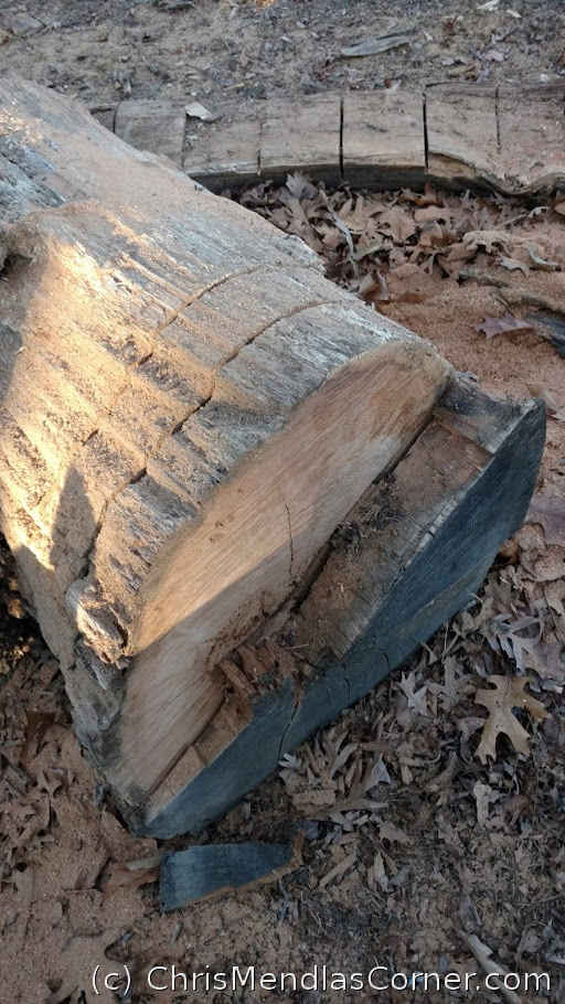 How to get firewood from a fallen large diameter tree