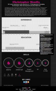vizualizeme resume Infographic