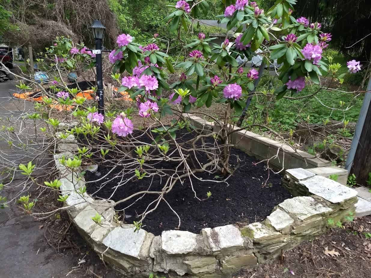 Flower bed with finished cinder block wall section