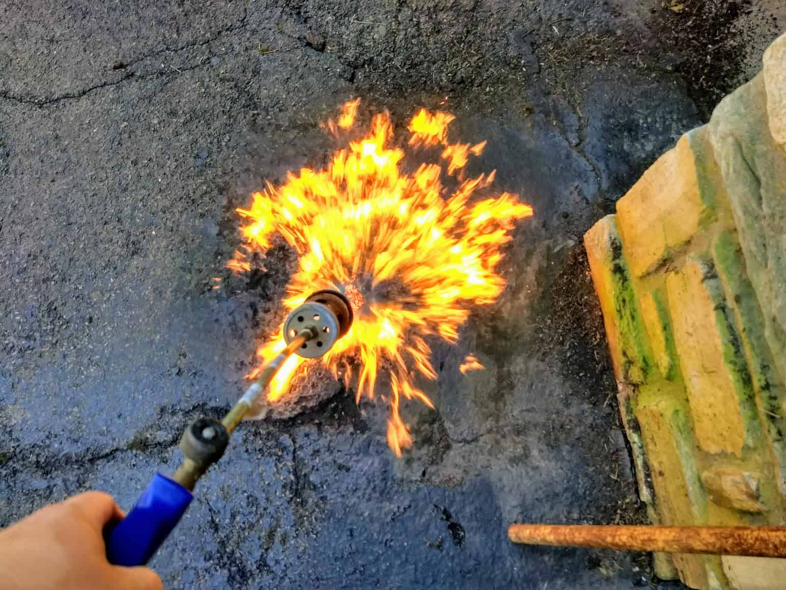 Torch to remove vegetation from an asphalt driveway prior to sealing